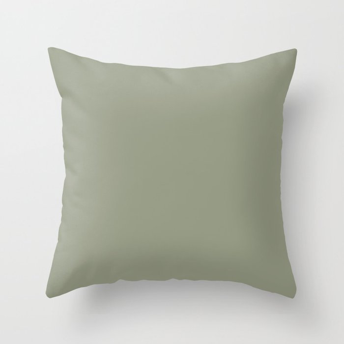 Solid Color Throw PIllows for Indoor and Outdoor Use
