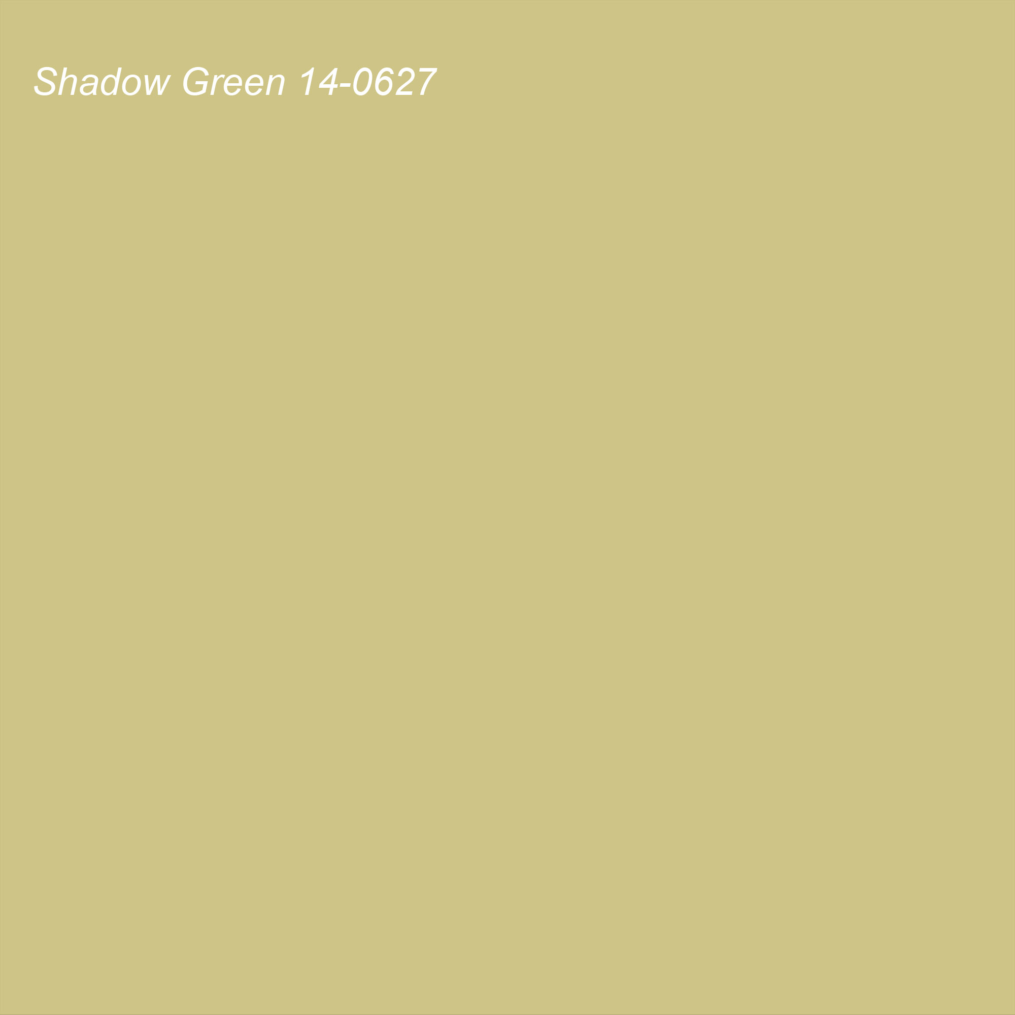 Pantone 2021 Color of the Year Suggested Accent Shade Shadow Green 14-0627
