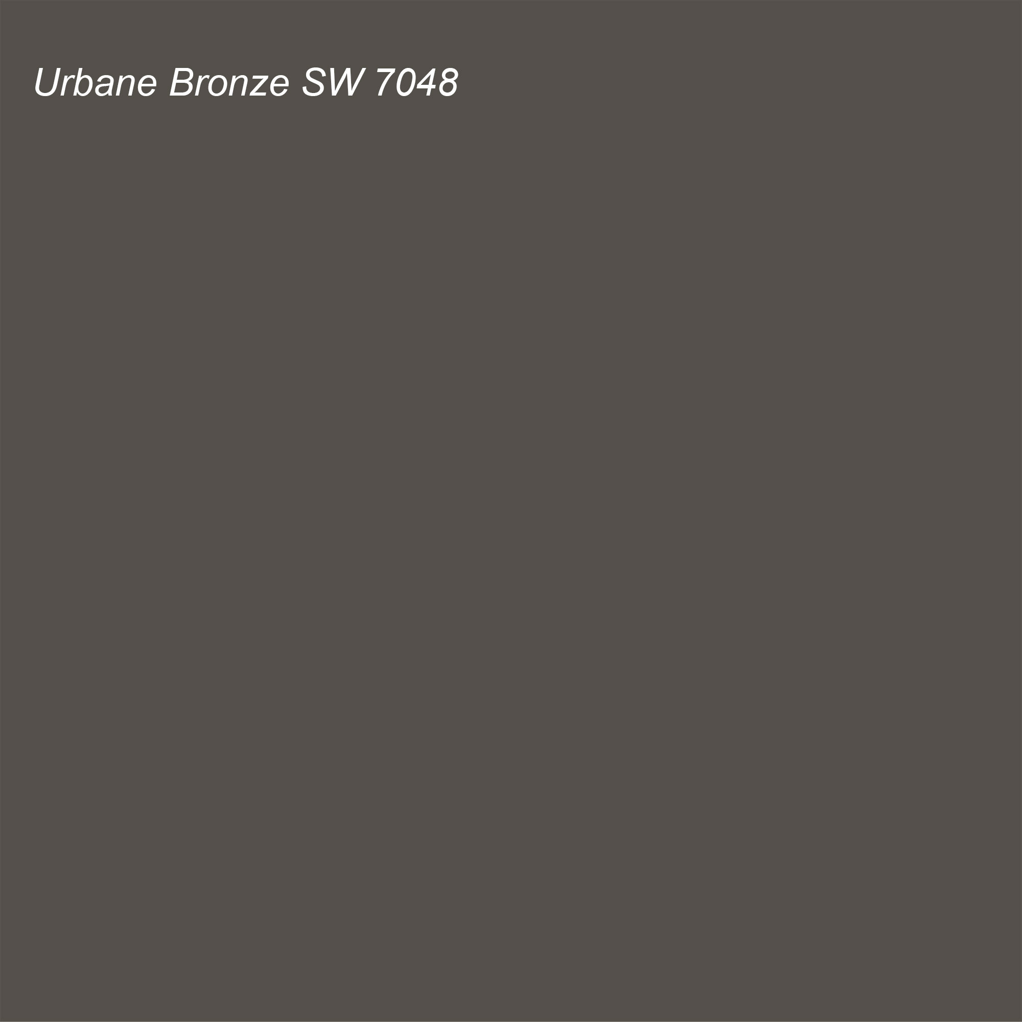 Sherwin Williams 2021 Color of the Year Urbane Bronze SW 7048