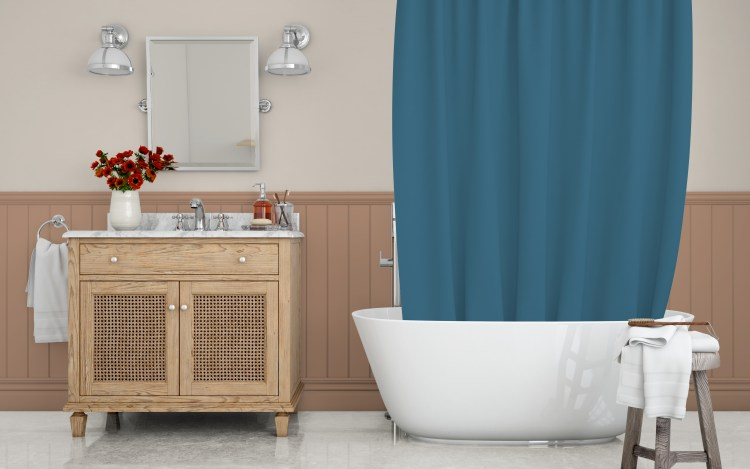 Behr Paint 2021 Color of the Year Canyon Dusk S210-4 and Coordinating Shower Curtain