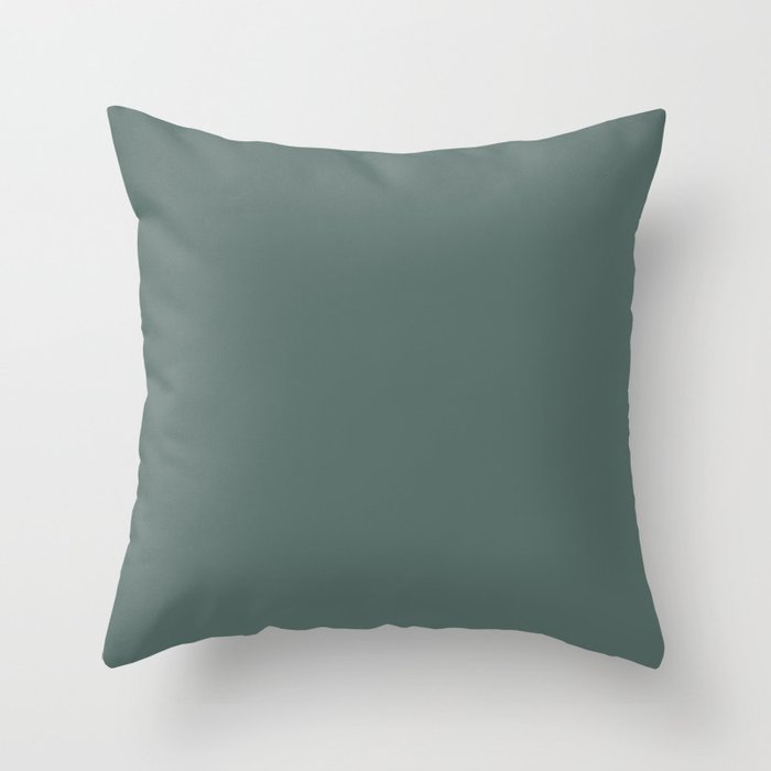 Dark Green Solid Color Behr 2021 Color of the Year Accent Shade Meteorological N430-6 Throw Pillow