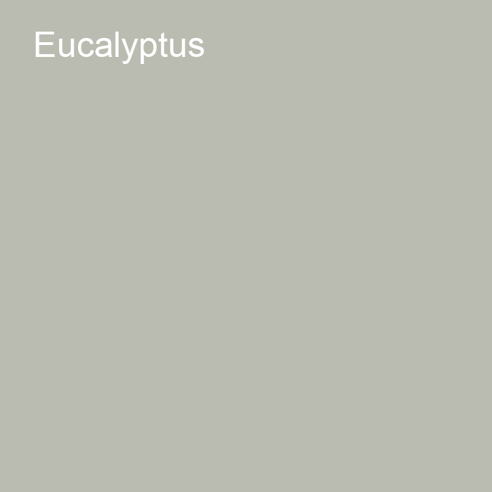 Muted Green Grey Trending Solid Color Pairs To Jolie 2021 Color of the Year Accent Shade Eucalyptus