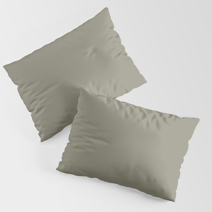 Pigeon Gray Green Solid Color Pairs Farrow and Ball 2021 Color of the Year Treron 292 Pillow Sham