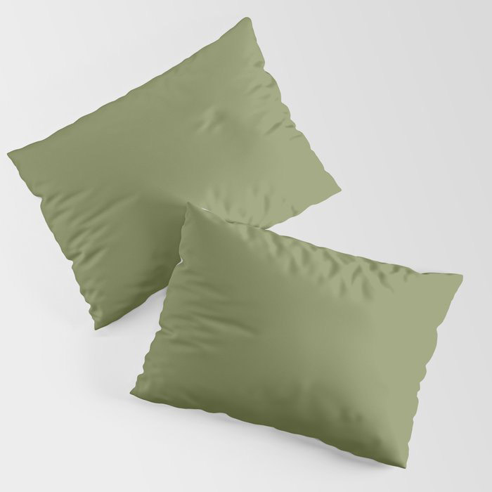 Summer Exploration Green Solid Color Pairs Farrow and Ball 2021 Color of the Year Sap Green W56 Pillow Sham