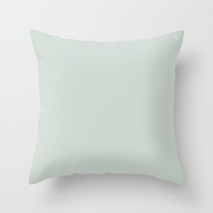 Beach Glass Pastel Green Coordinates w/ Behr 2022 Color of the Year Breezeway MQ3-21 Throw Pillow