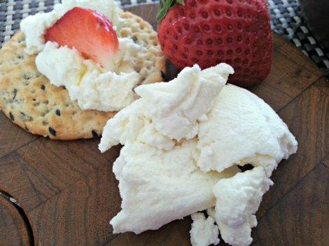 Creamy Ricotta Cheese