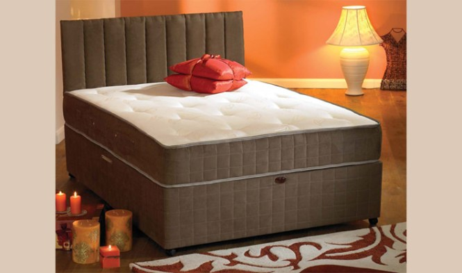 Comfy Night Premier