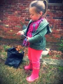 olivecompostingday