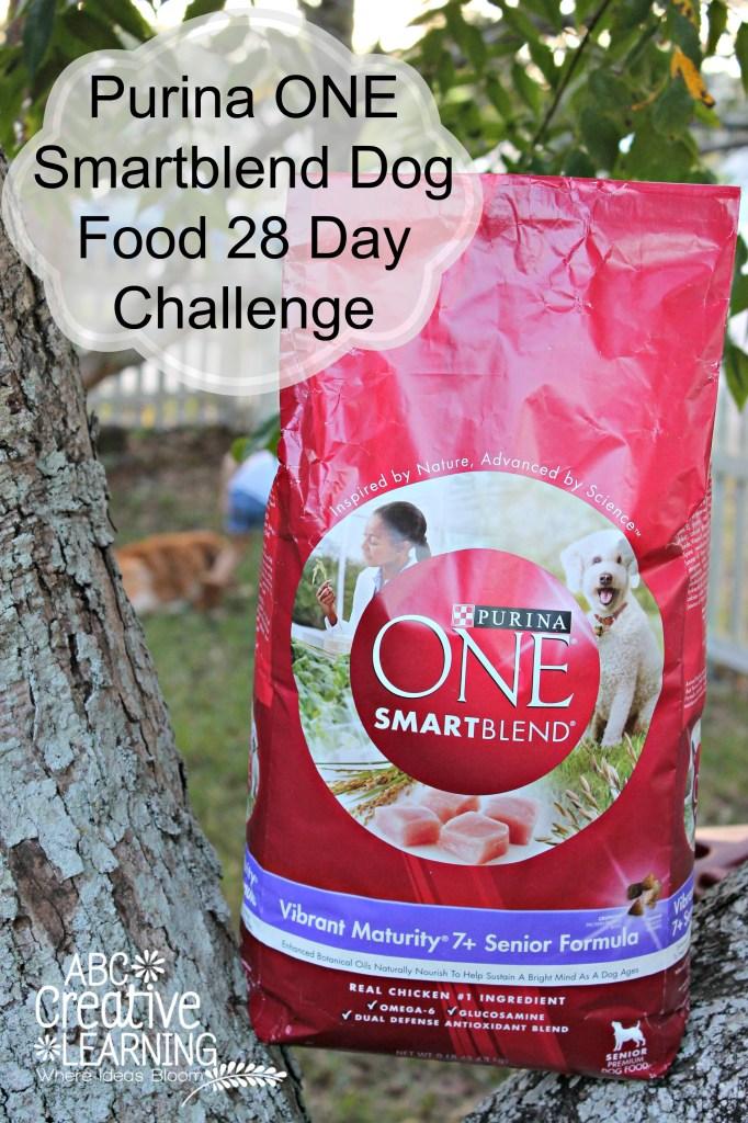 Jasmine takes the Purina ONE Smartblend Dog Food 28 Day Challenge