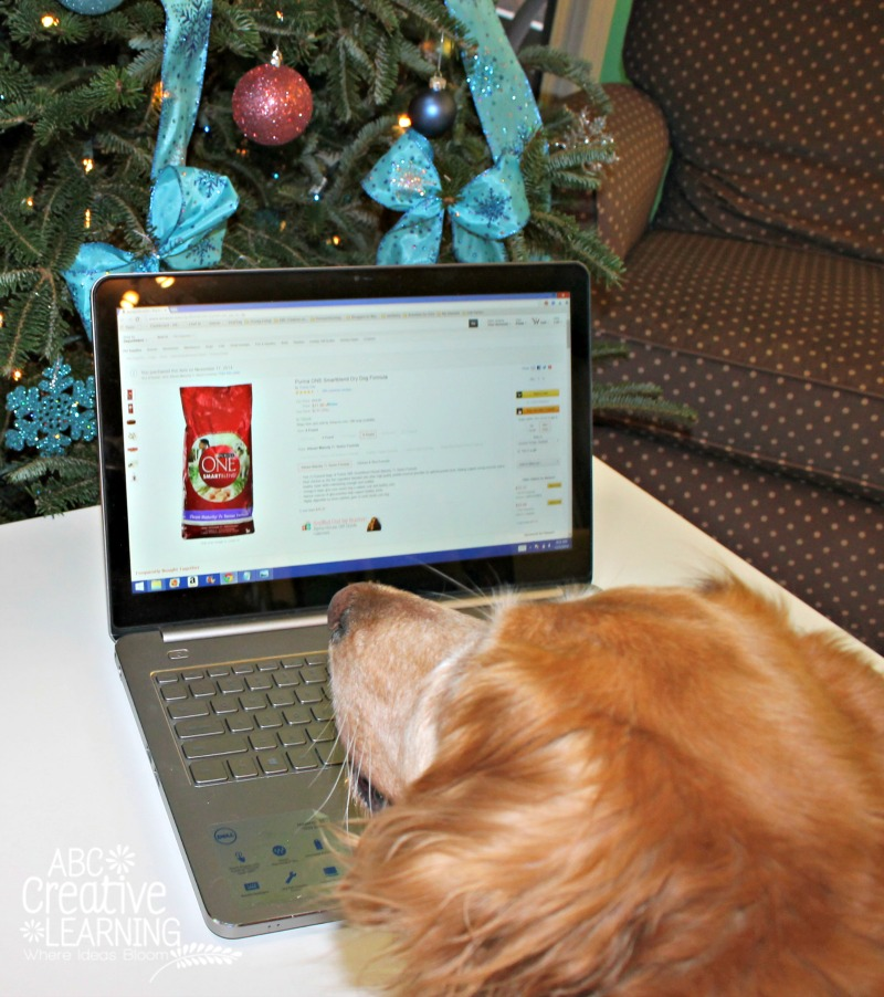 Purina ONE Dog Food 28 Day Challenge Smart Blend