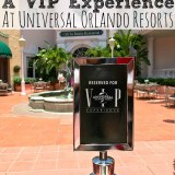 5 Reasons To Book a VIP Experience at Universal Orlando