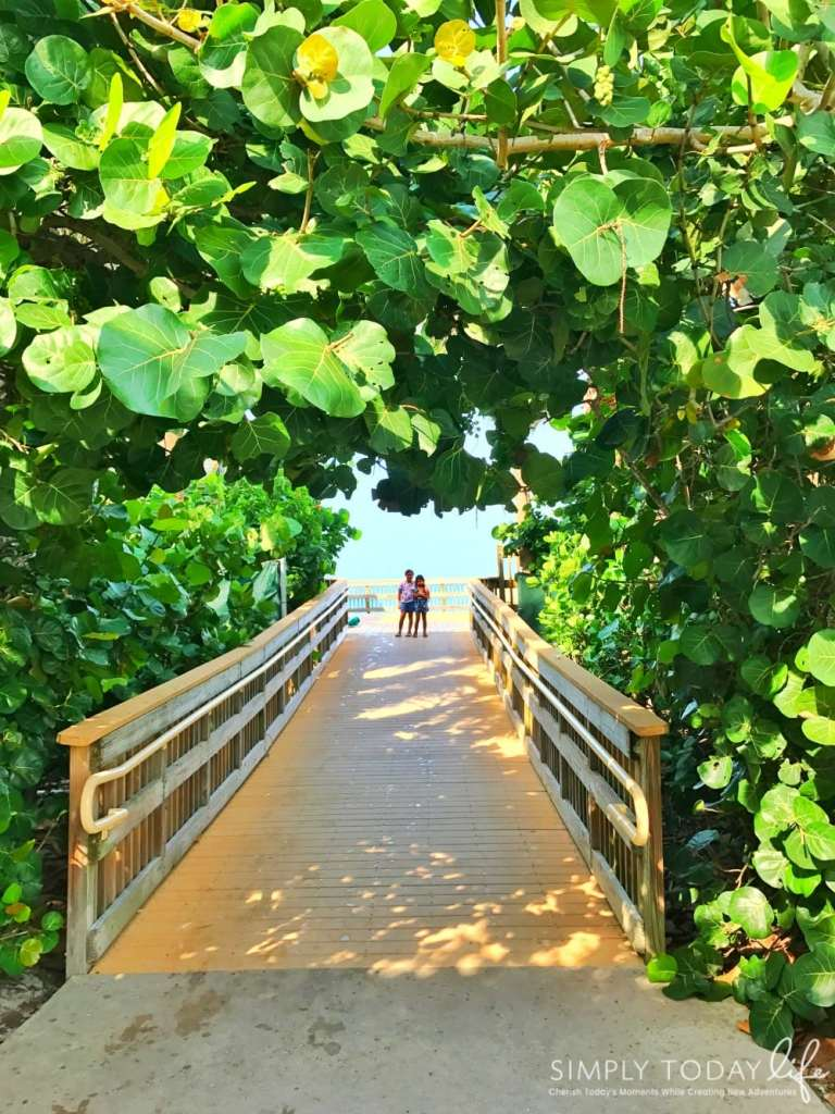 8 Reasons To Stay At Disney's Vero Beach Resort + Room Tour - Vero Beach Florida