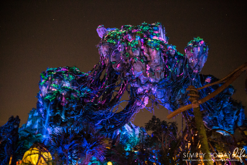 Disney Animal Kingdom Pandora at Night