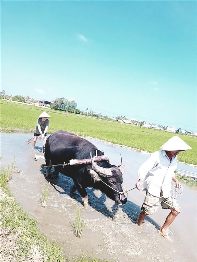 Farming and fishing life tour (4)