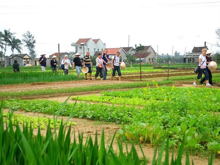 Hoi An countryside (3)