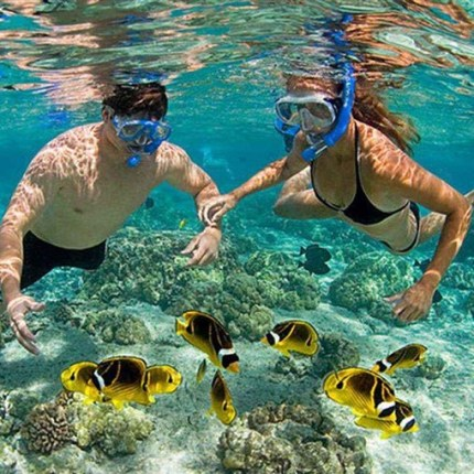 Discovery scuba diving in Cham island for beginners