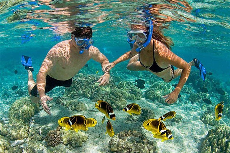 Discovery scuba diving in Cham island for beginners (9)
