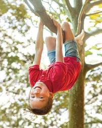 urgent care child in tree