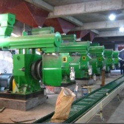 Feed & Wood Pelleting