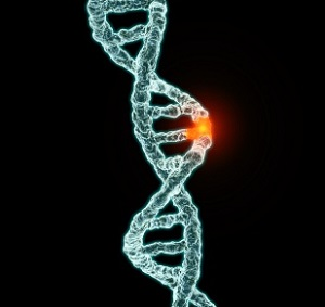 ssfp genetic mutations ice