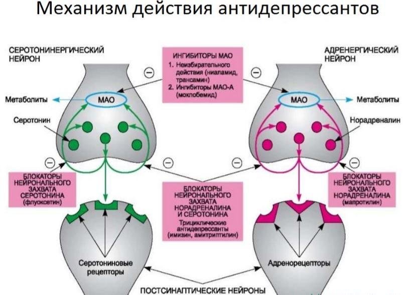 Trittyko prosztatitis)