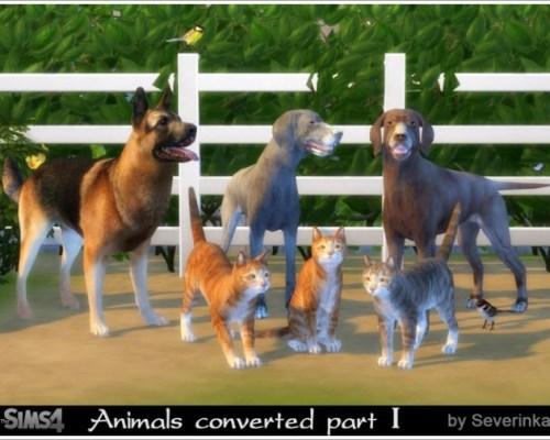 Animals converted part I