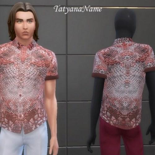 Men's shirt 02