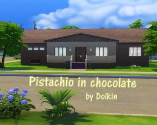 Pistachio in chocolate by Dolkin