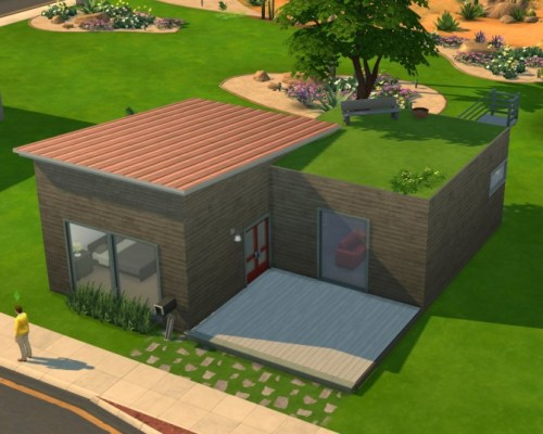 Modern Starter with Roof Yard