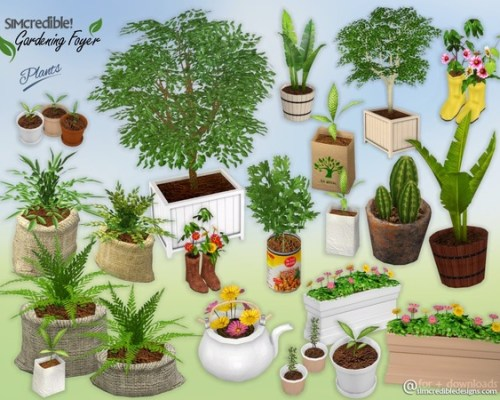 Gardening Foyer Plants by SIMcredible