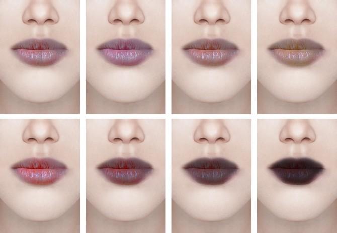 Lipstick #13 & Tattoo #6