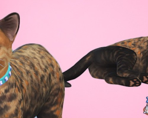 Venus cat by 3lodiie at