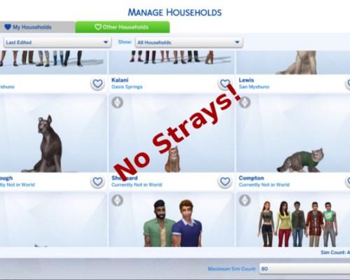 No Strays by Rosebud1773