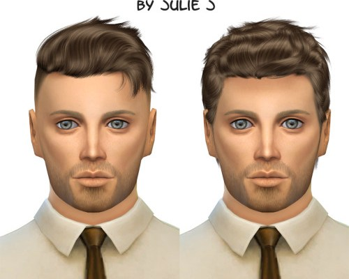 Male Hair Dump Wingssims 0917 and 01113 Retextured