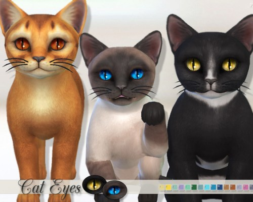 Cats Eyes by Pinkzombiecupcakes