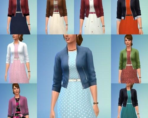 Ladys Autumn Dress