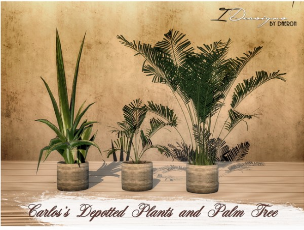 Where Buy Real Plants