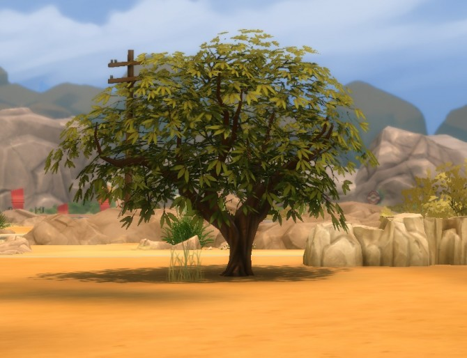 Liberated Desert Plants by plasticbox at Mod The Sims