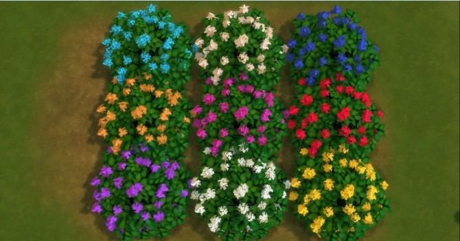 For The Outdoor plants by AdonisPluto at Mod The Sims  Sims 4 Updates