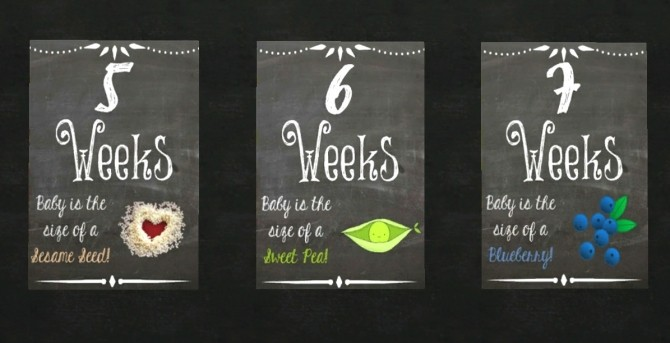 Weekly pregnancy chalkboards at Akai Sims  Sims 4 Updates