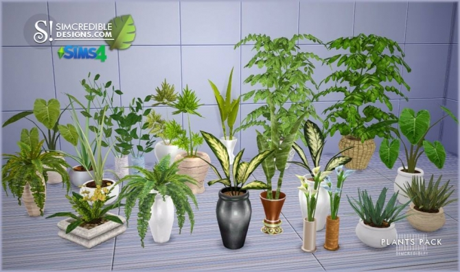 Plants Pack at SIMcredible Designs 4  Sims 4 Updates
