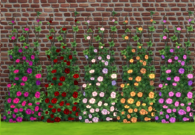 Rose Climber by Snowhaze at Mod The Sims  Sims 4 Updates