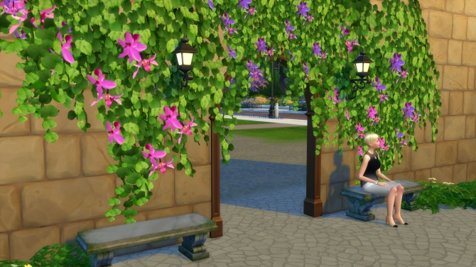 Tropical Vines in Bloom by Snowhaze at Mod The Sims  Sims 4 Updates