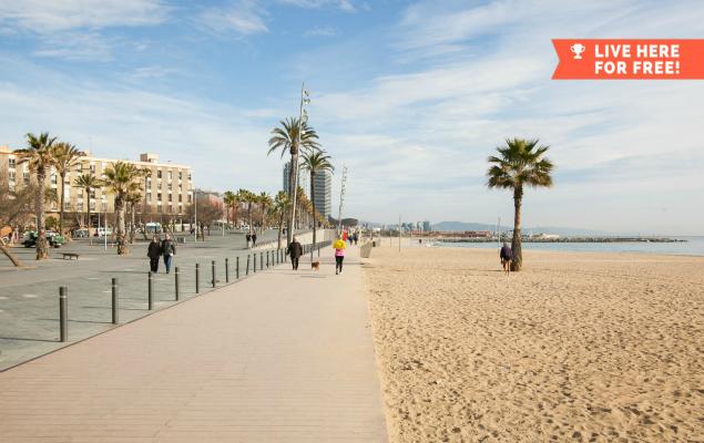 Nestpick Barcelona
