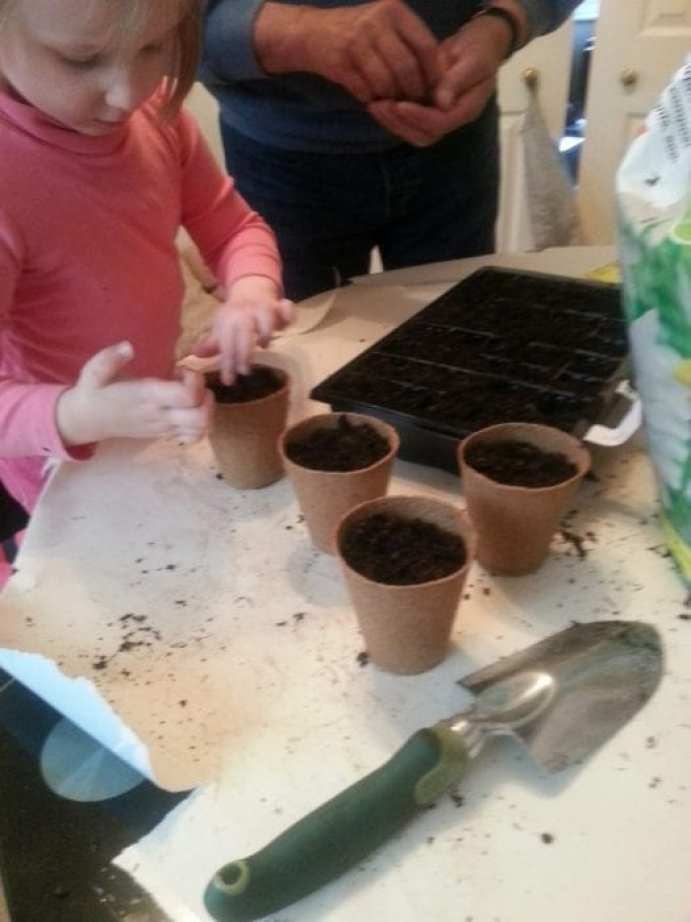 B&Q, gardening, #CBias, #SocialFabric