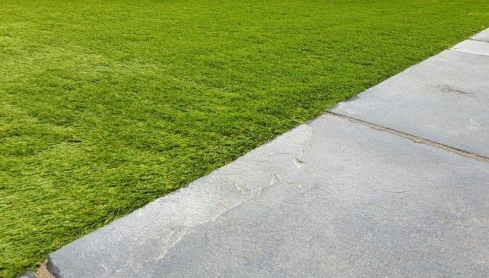 Royal Wedding Party Fake Grass