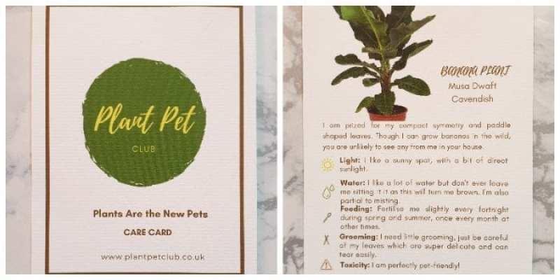 Plant Pet Club Care Instructions