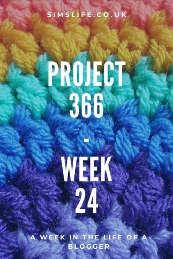 Project 366- Week 24 Pinterest