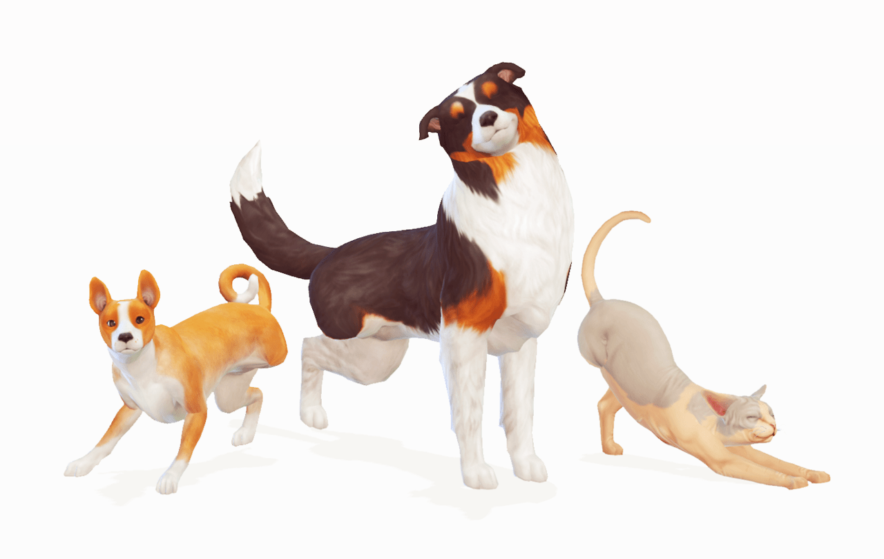 Mods Since Cats And Dogs Sims