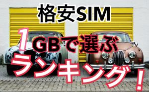 格安SIM 1GB